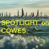 SPOTLIGHT on COWES
